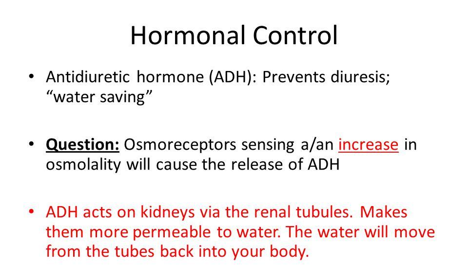 Hormonal Control Antidiuretic hormone (ADH): Prevents diuresis; water saving