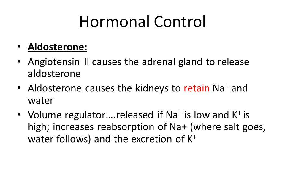 Hormonal Control Aldosterone: