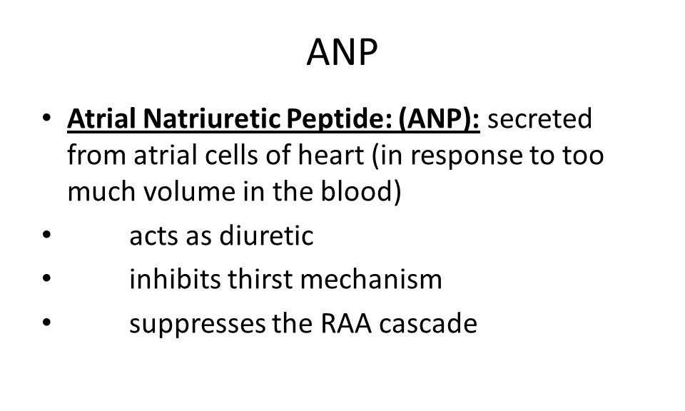 ANP Atrial Natriuretic Peptide: (ANP): secreted from atrial cells of heart (in response to too much volume in the blood)