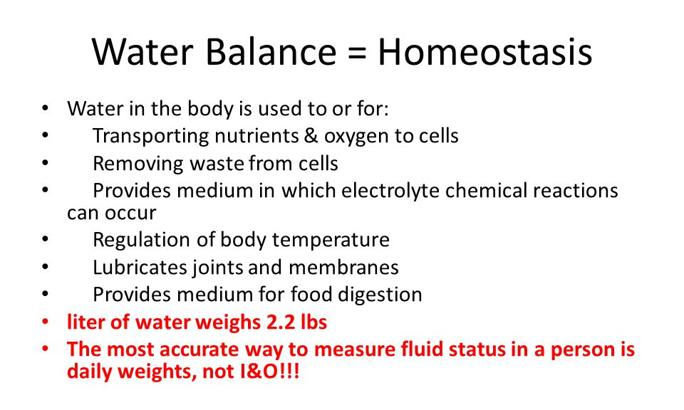 Water Balance = Homeostasis