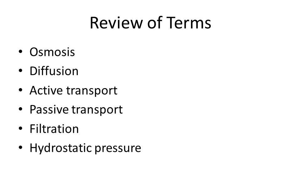 Review of Terms Osmosis Diffusion Active transport Passive transport