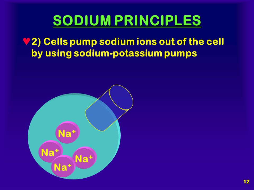 SODIUM PRINCIPLES 2) Cells pump sodium ions out of the cell by using sodium-potassium pumps. Na+ Na+