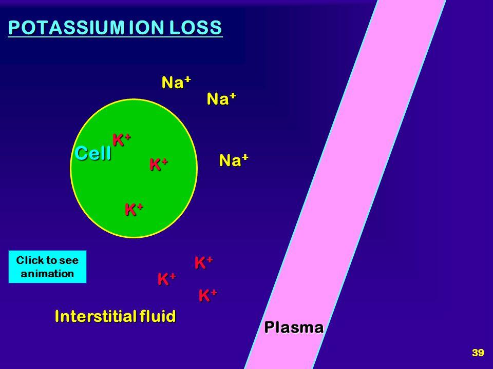 POTASSIUM ION LOSS Cell Na+ Na+ K+ Na+ K+ K+ K+ K+ K+