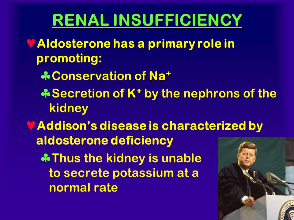 RENAL INSUFFICIENCY Aldosterone has a primary role in promoting: