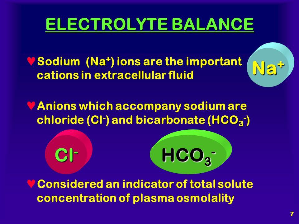 Na+ Cl- HCO3- ELECTROLYTE BALANCE