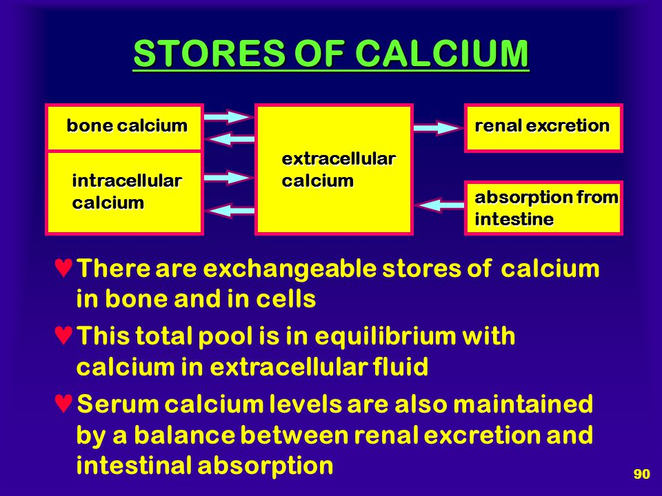 STORES OF CALCIUM bone calcium. renal excretion. extracellular. calcium. intracellular. calcium.
