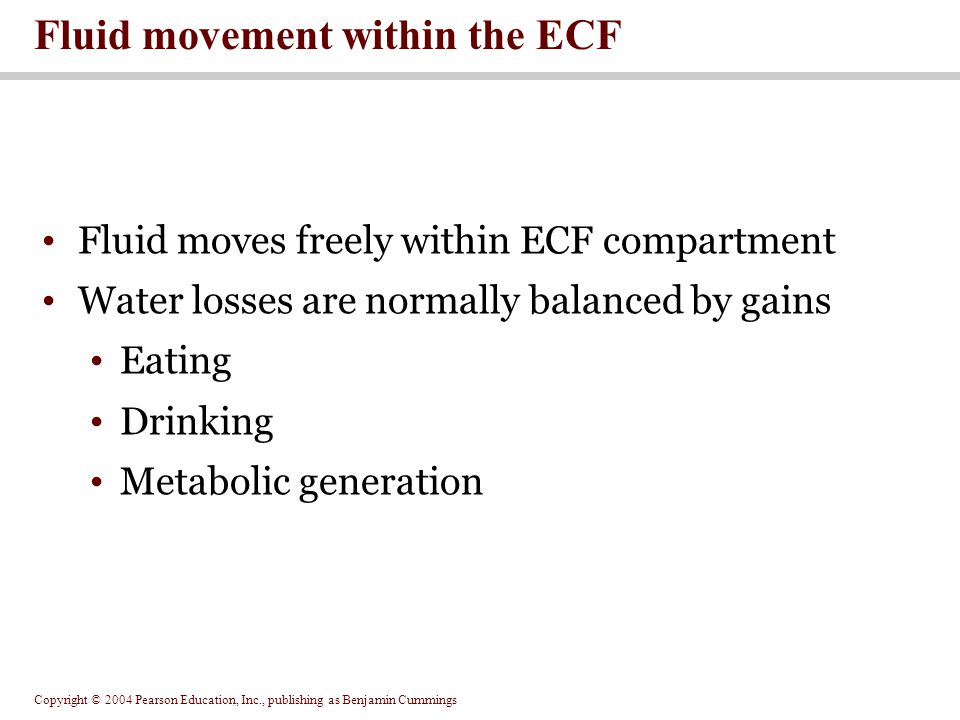 Fluid movement within the ECF