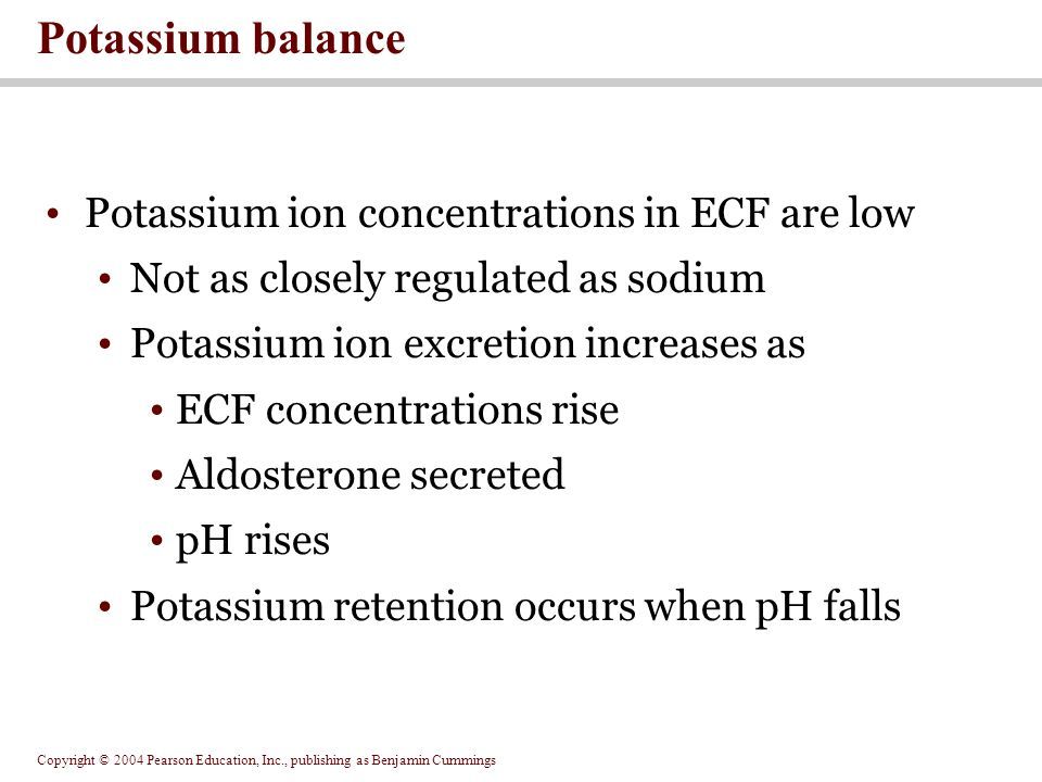 Potassium balance Potassium ion concentrations in ECF are low