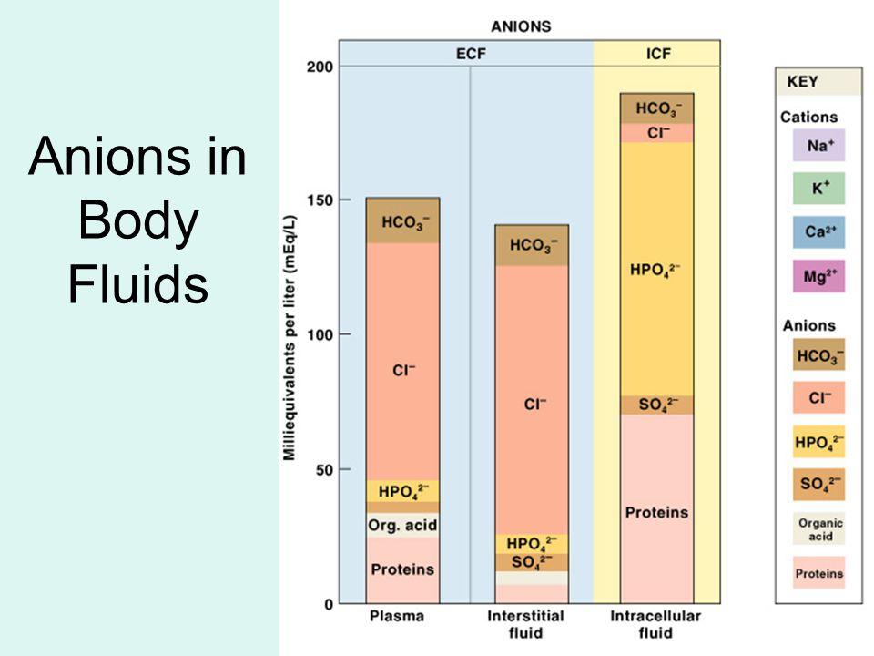 Anions in Body Fluids Figure 27–2 (2 of 2)