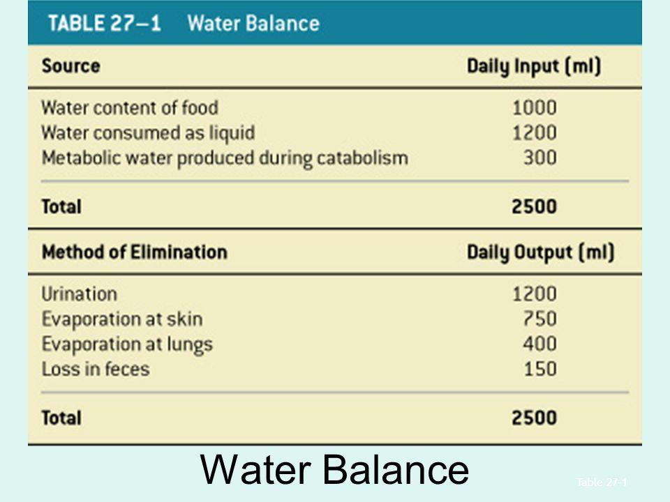 Water Balance Table 27–1