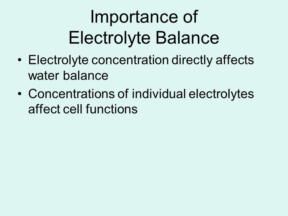 Importance of Electrolyte Balance