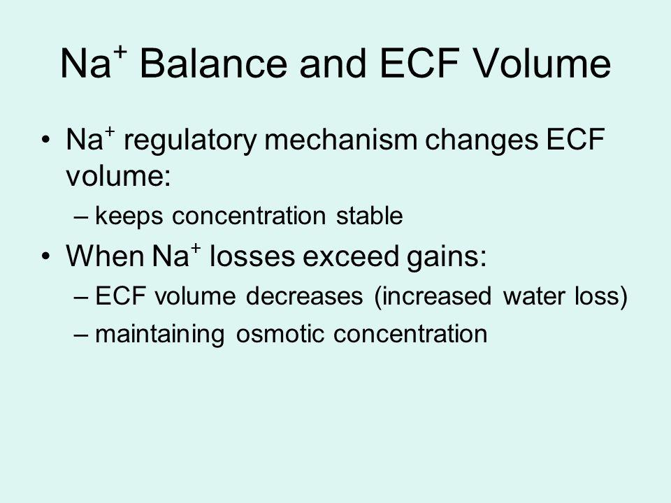Na+ Balance and ECF Volume