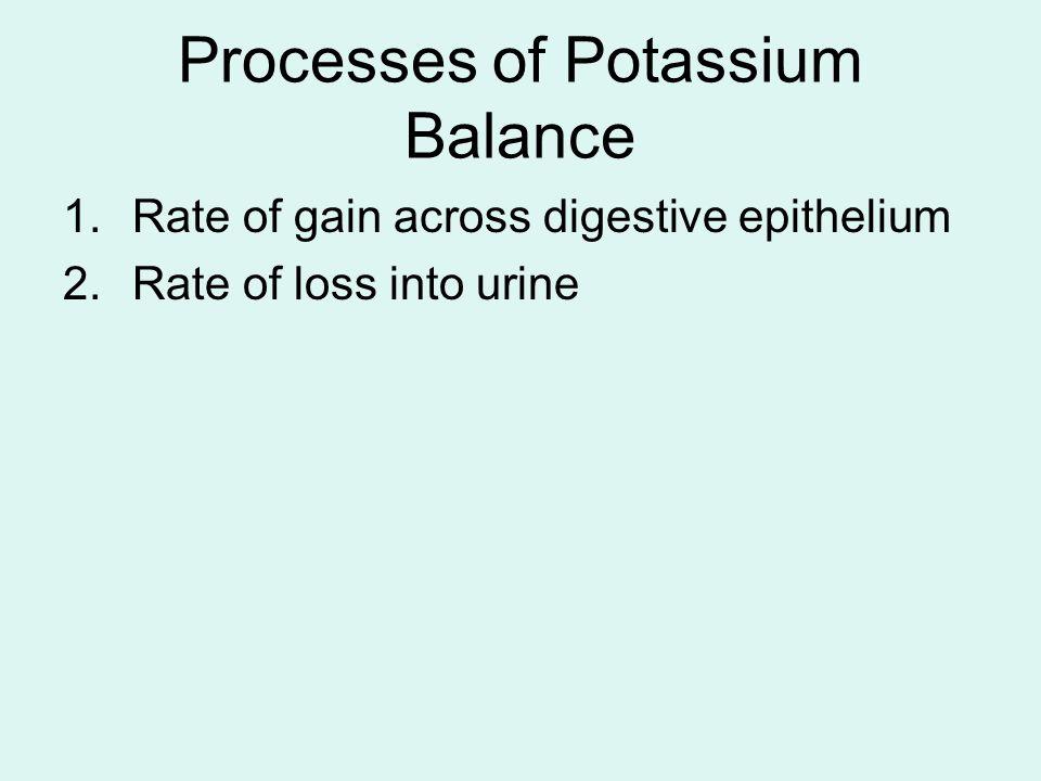 Processes of Potassium Balance