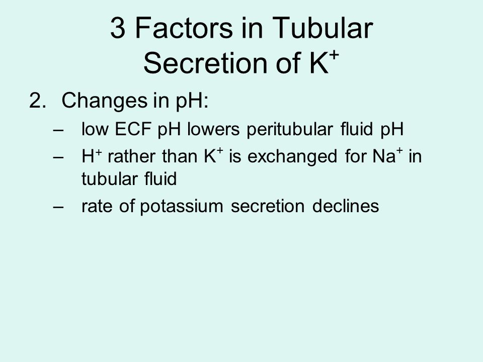 3 Factors in Tubular Secretion of K+
