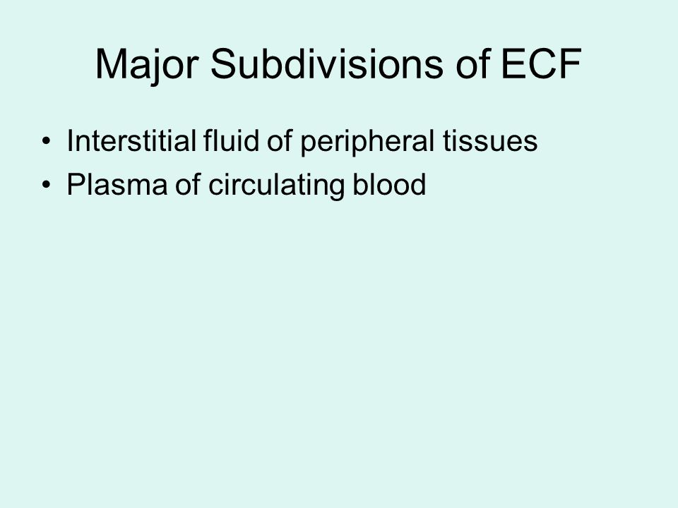 Major Subdivisions of ECF