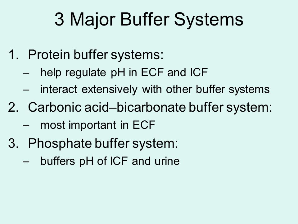 3 Major Buffer Systems Protein buffer systems: