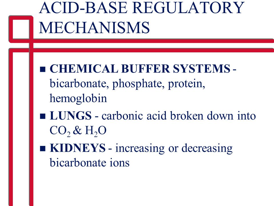 ACID-BASE REGULATORY MECHANISMS