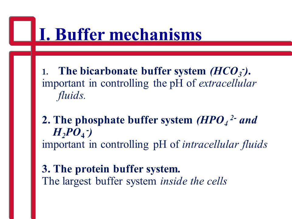 I. Buffer mechanisms The bicarbonate buffer system (HCO3-).