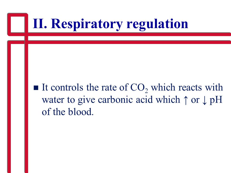II. Respiratory regulation