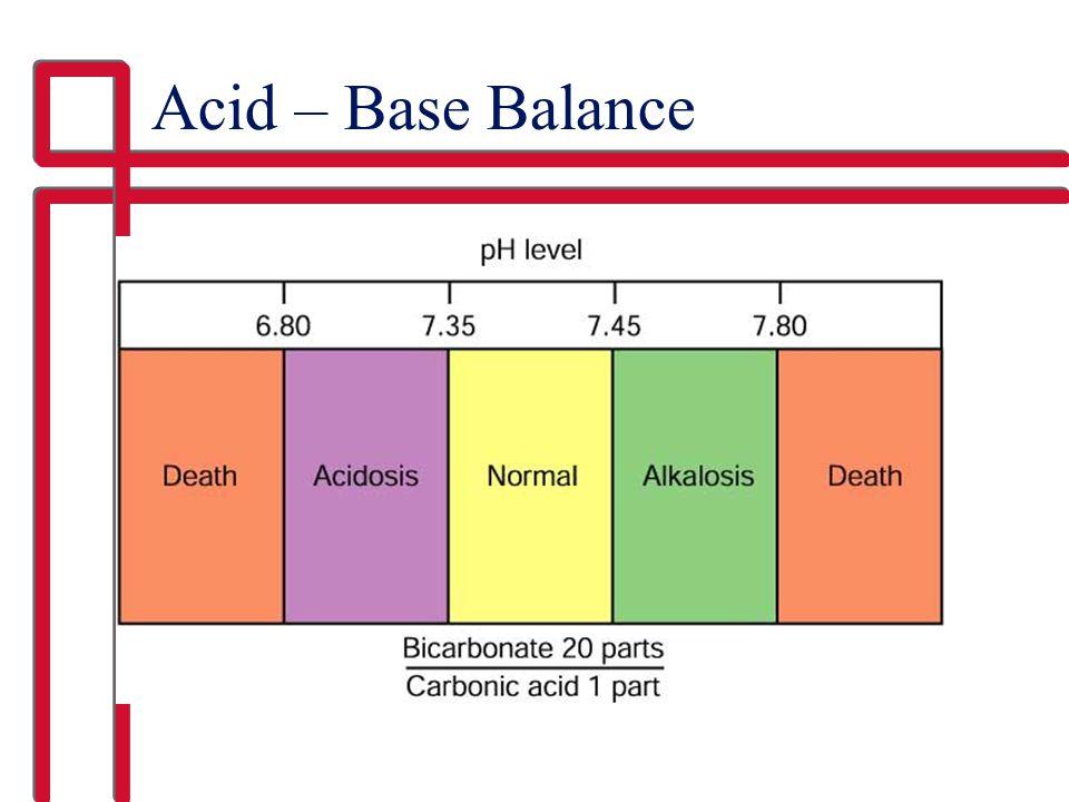 Acid – Base Balance