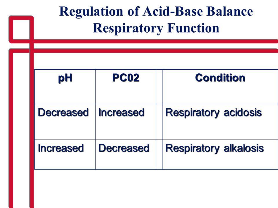 Regulation of Acid-Base Balance Respiratory Function