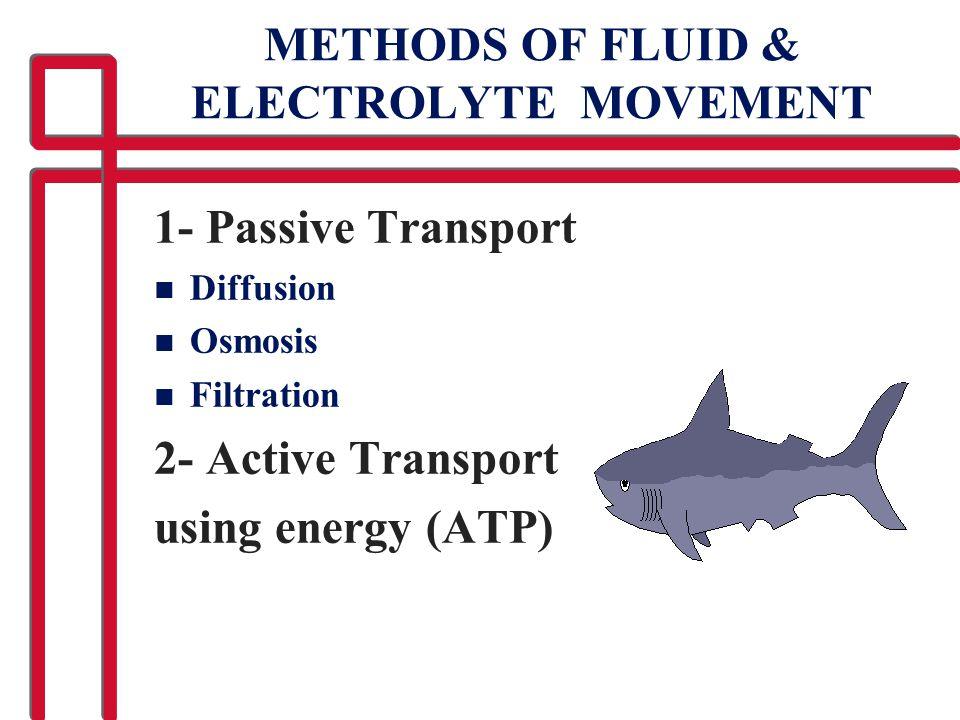 METHODS OF FLUID & ELECTROLYTE MOVEMENT