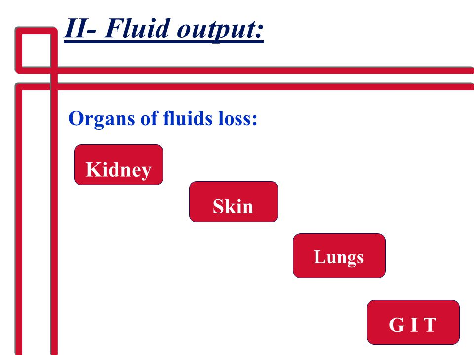 II- Fluid output: Organs of fluids loss: Kidney Skin Lungs G I T