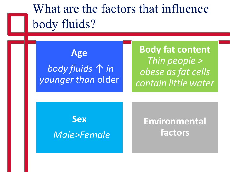 What are the factors that influence body fluids