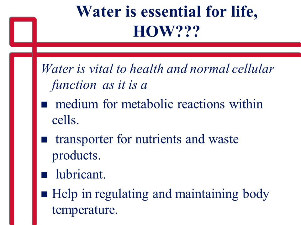 Water is essential for life, HOW