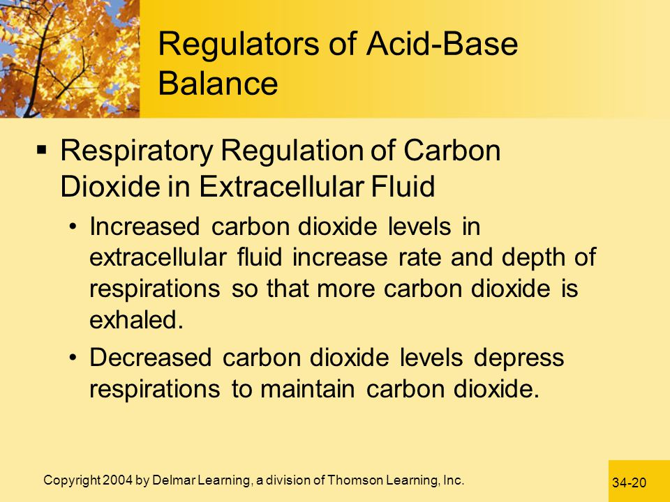 Regulators of Acid-Base Balance