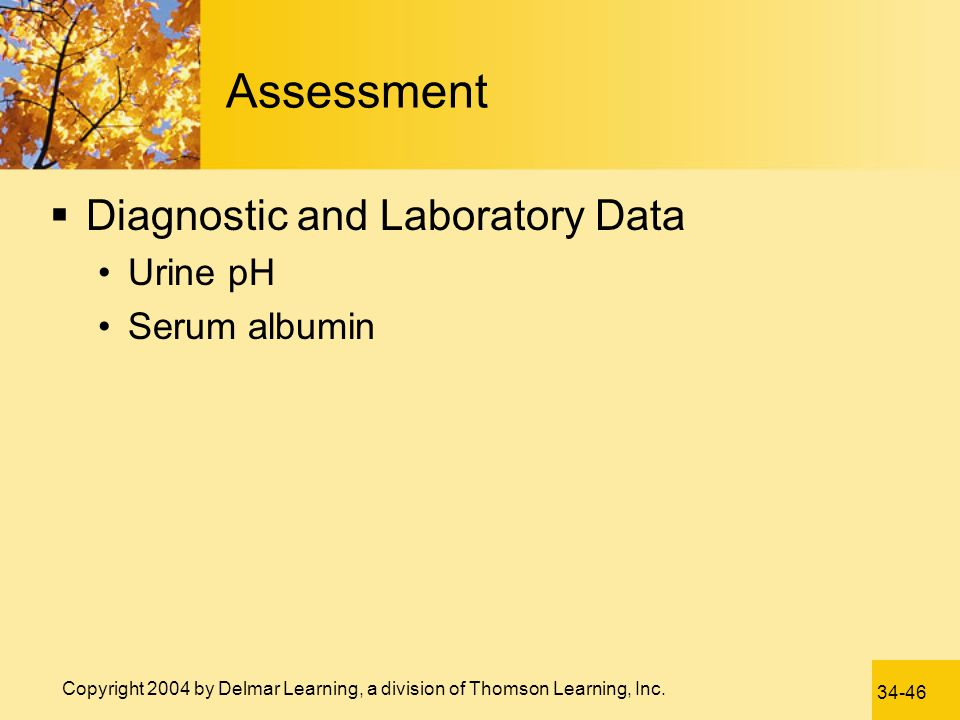 Assessment Diagnostic and Laboratory Data Urine pH Serum albumin