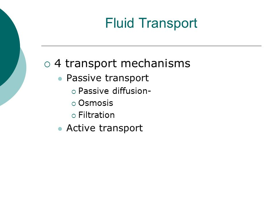 Fluid Transport 4 transport mechanisms Passive transport