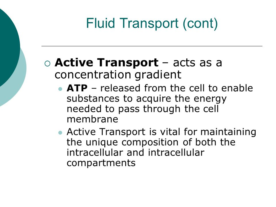 Fluid Transport (cont)