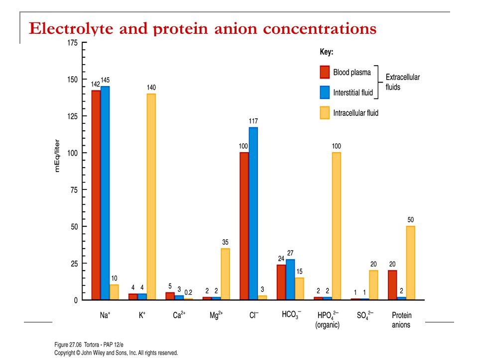 Electrolyte and protein anion concentrations