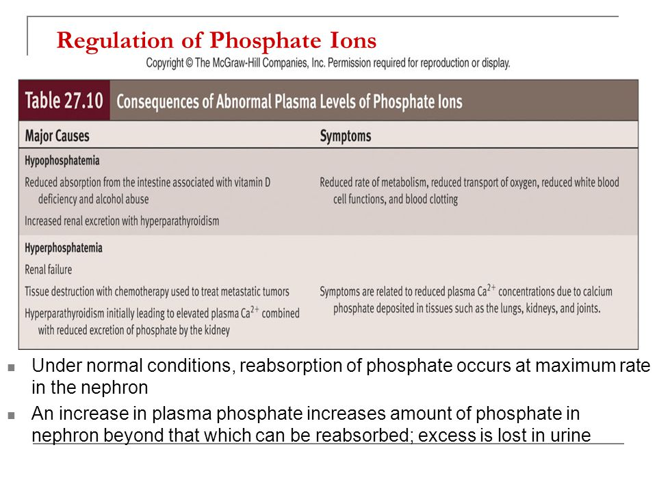 Regulation of Phosphate Ions