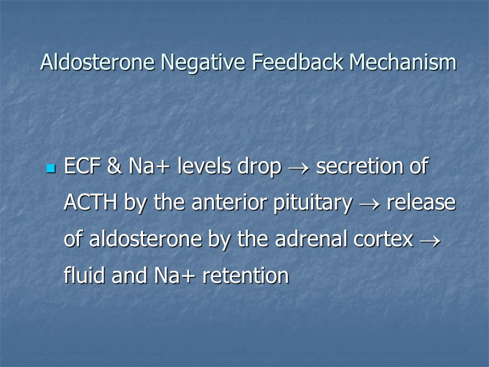 Aldosterone Negative Feedback Mechanism