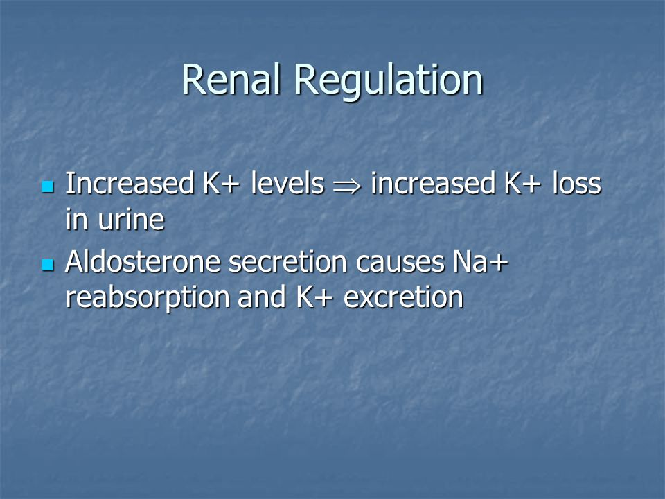 Renal Regulation Increased K+ levels  increased K+ loss in urine