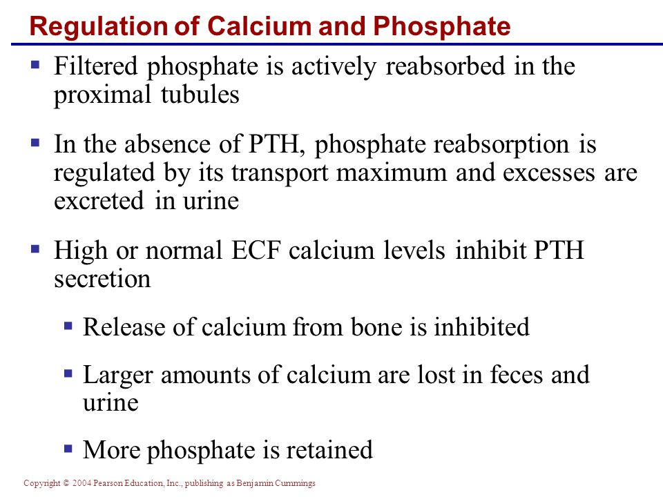 Regulation of Calcium and Phosphate