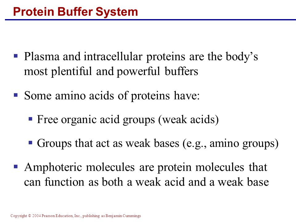 Some amino acids of proteins have: