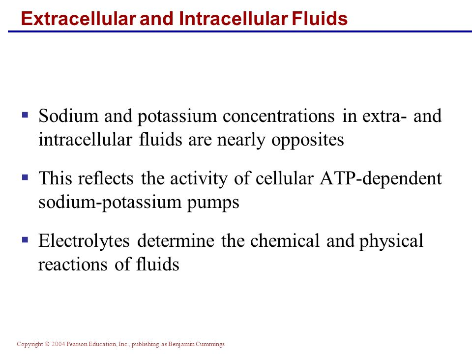 Extracellular and Intracellular Fluids