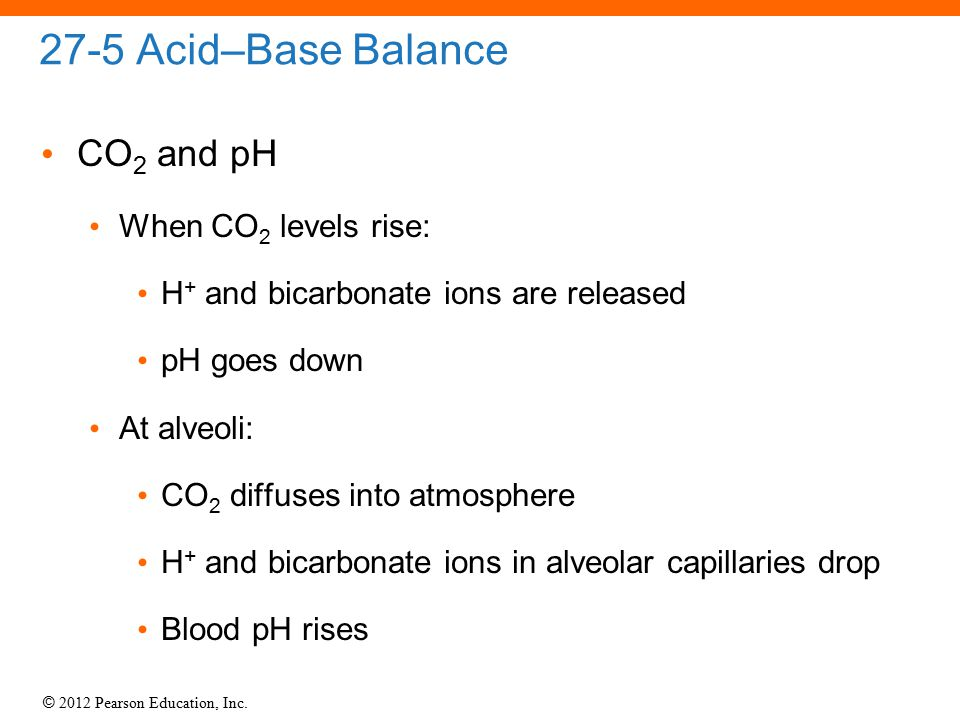 27-5 Acid–Base Balance CO2 and pH When CO2 levels rise: