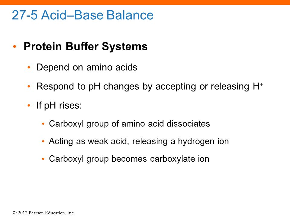 27-5 Acid–Base Balance Protein Buffer Systems Depend on amino acids