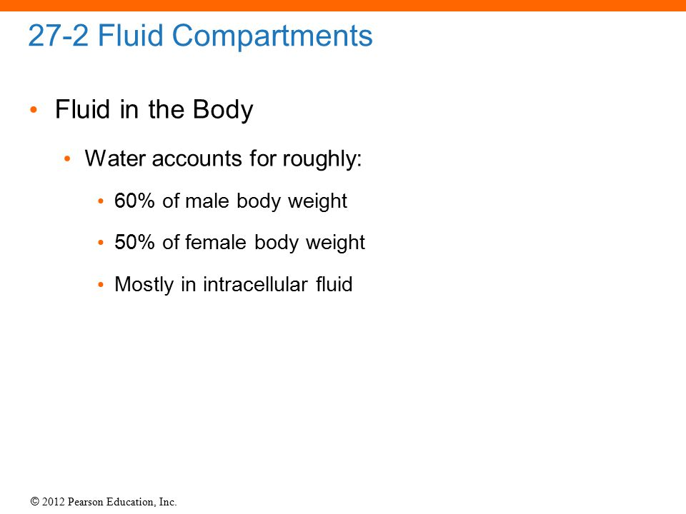 27-2 Fluid Compartments Fluid in the Body Water accounts for roughly: