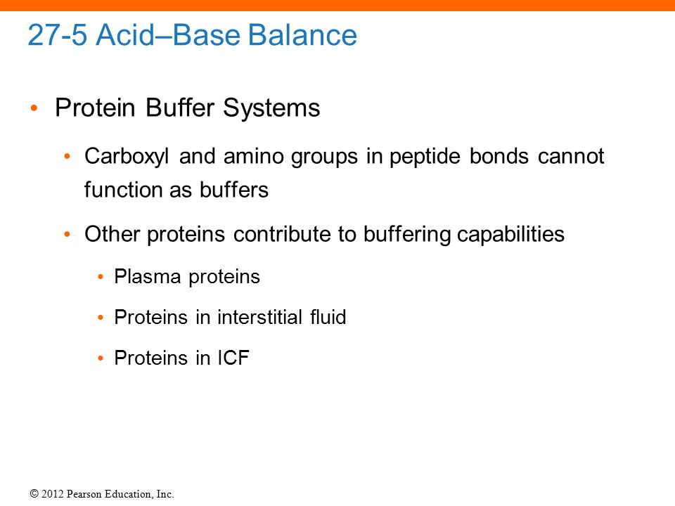 27-5 Acid–Base Balance Protein Buffer Systems