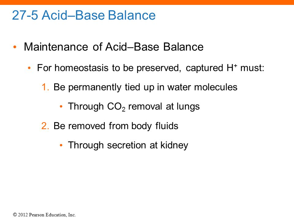 27-5 Acid–Base Balance Maintenance of Acid–Base Balance