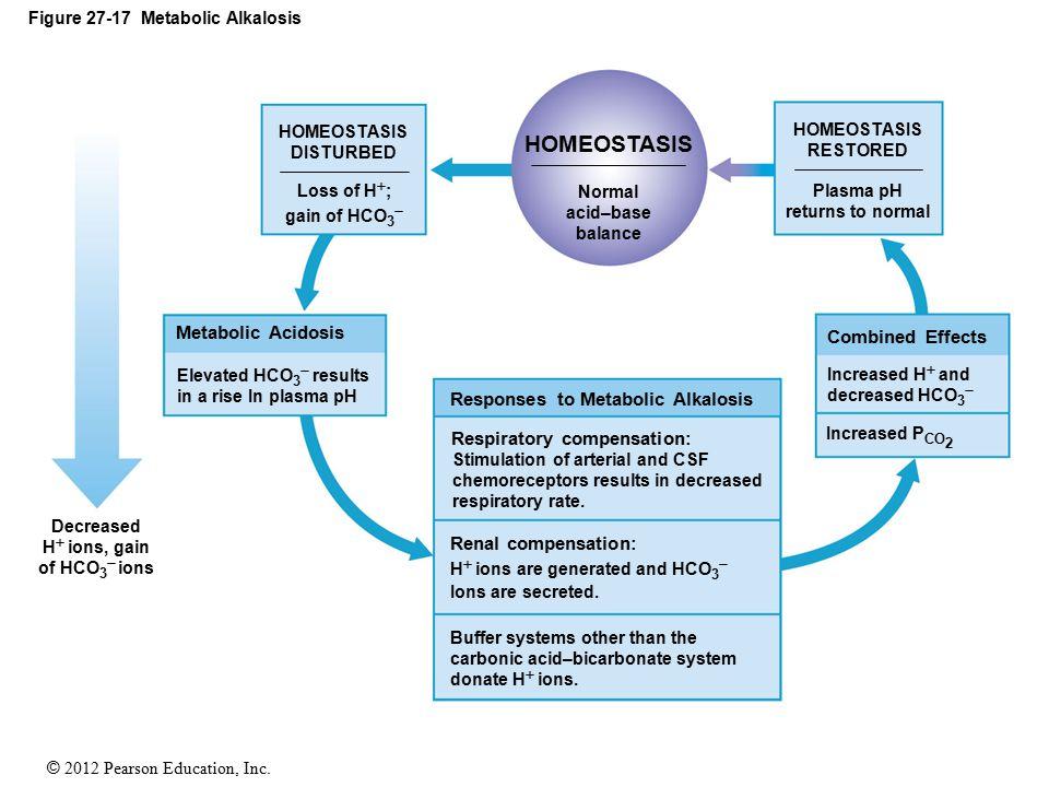Figure 27-17 Metabolic Alkalosis