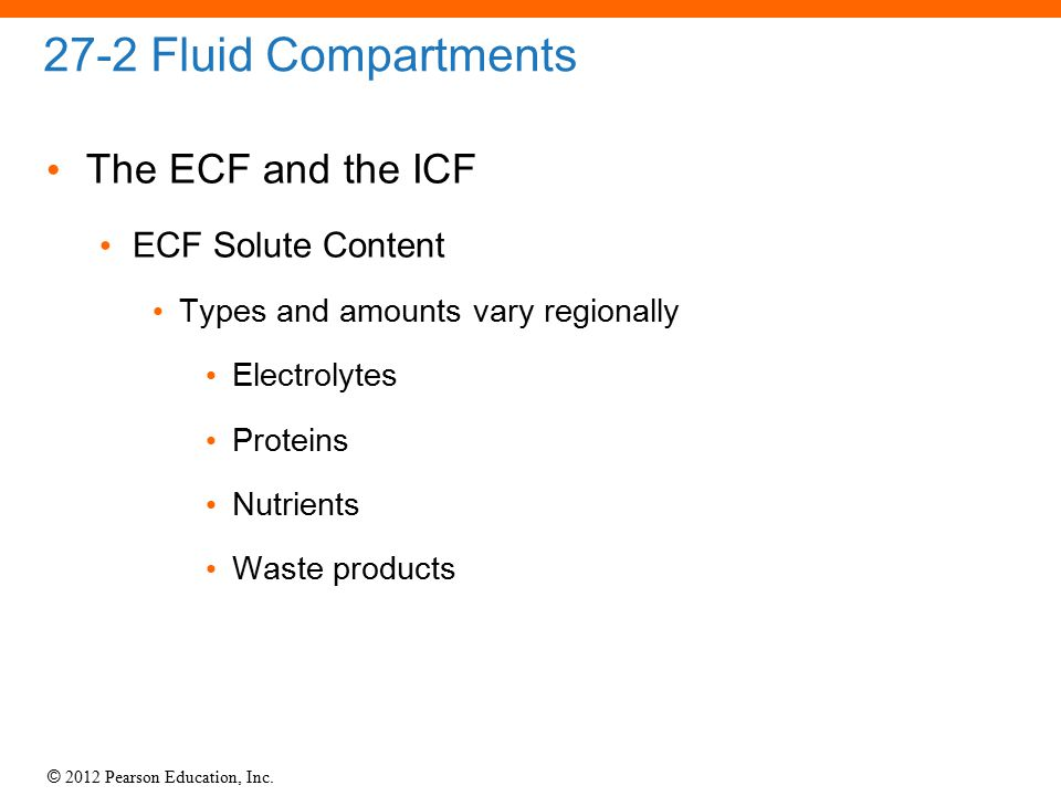 27-2 Fluid Compartments The ECF and the ICF ECF Solute Content