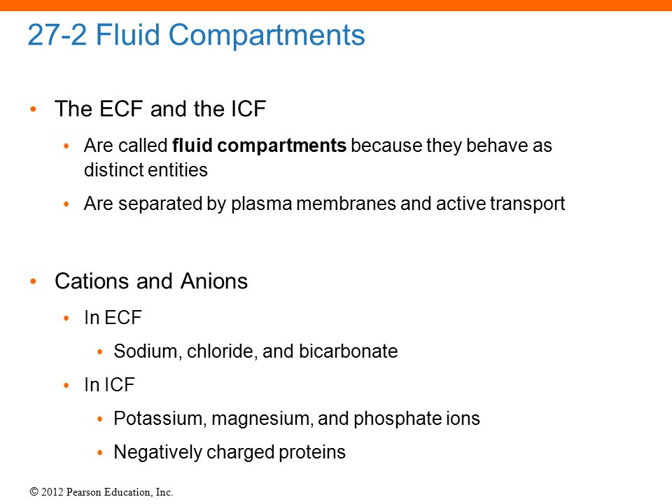 27-2 Fluid Compartments The ECF and the ICF Cations and Anions
