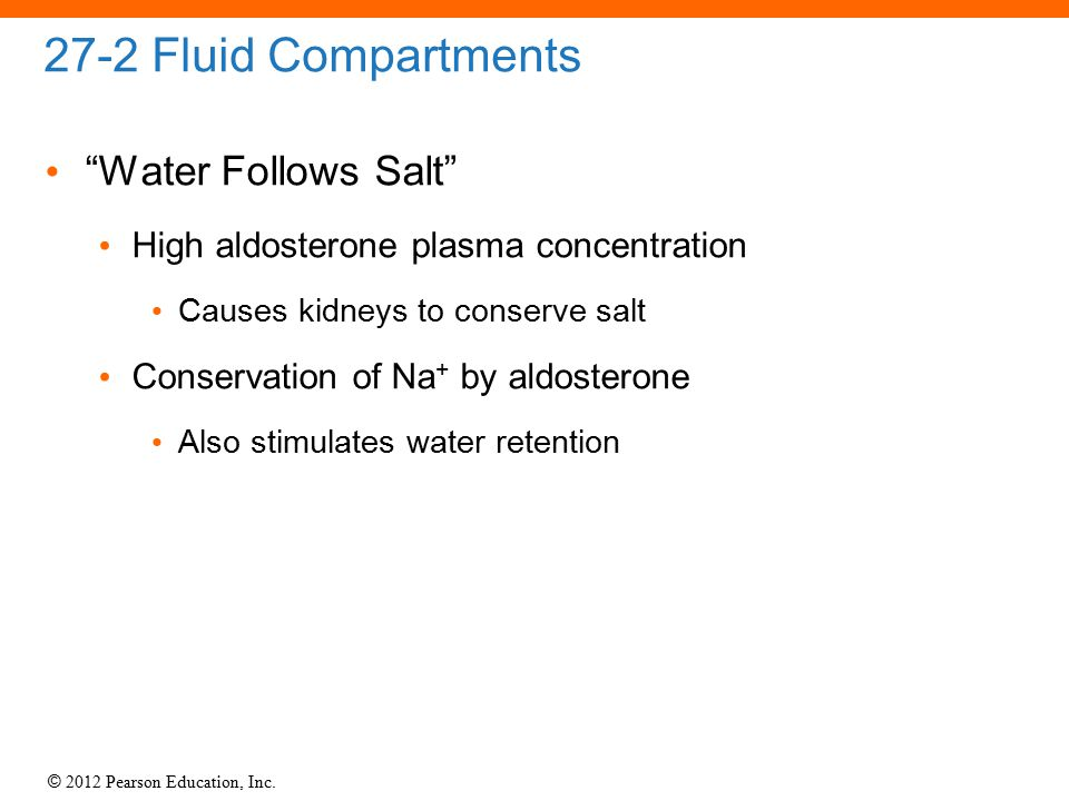 27-2 Fluid Compartments Water Follows Salt