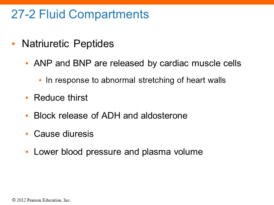 27-2 Fluid Compartments Natriuretic Peptides
